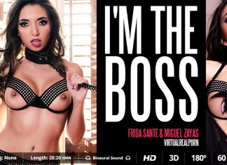 I'm the boss VR Porn