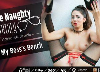 The Naughty Secretary: My Boss's Bench